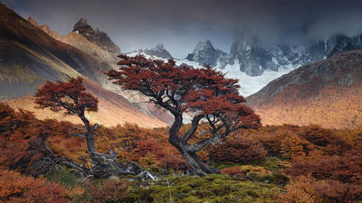 عکاس، آندرهآ پوزی از آرژانتین.