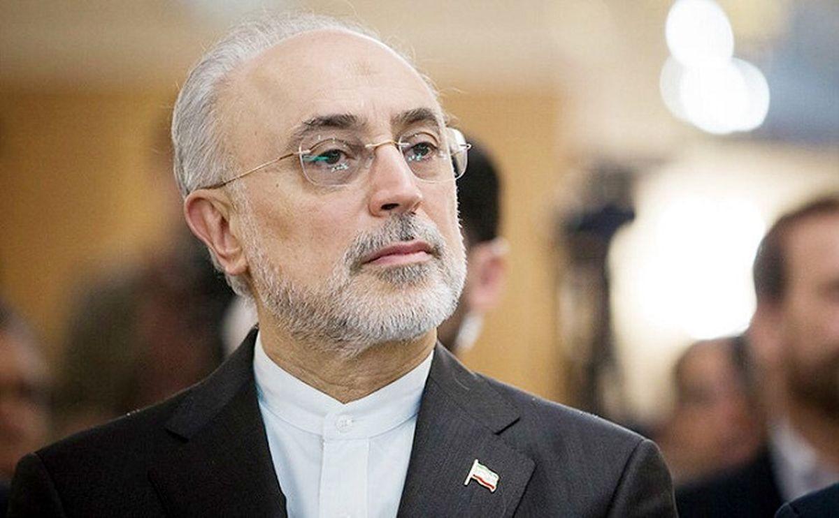 علیاکبر صالحی پیروزی رئیسی را تبریک گفت + متن پیام