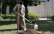 تصاویر: کاشت دو نهال میوه توسط رهبر معظم انقلاب