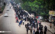 پیادهروی زائران از کربلا به نجف / تصاویر