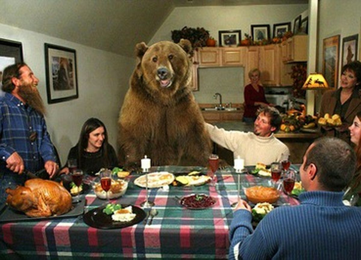 عکسی عجیب از پرورش خرس عظیم الجثه در خانه