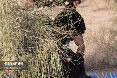 عزاداری سنتی در بیابان