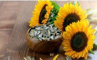 مصرف بیرویه دانههای آفتابگردان چه خطراتی دارد؟