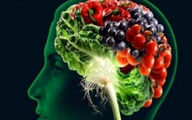 ۱۴ ماده غذایی که برای مغز و حافظه مفید است
