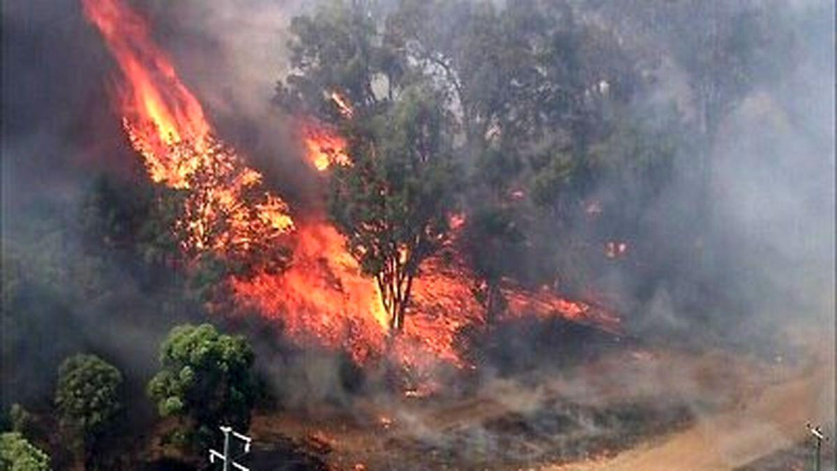تصاویر هولناک گردباد آتش