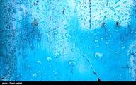 برگ و باران /تصاویر