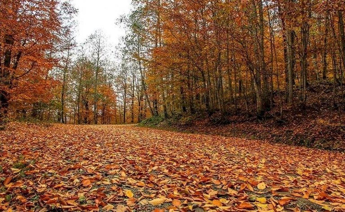 سفر به شمال ایران در پاییز