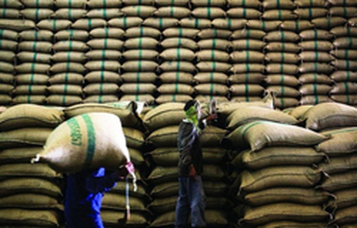 افزایش قیمت برنج به بهانه سیل/ دبیر انجمن حمایت: سوداگران به دنبال افزایش واردات برنج هستند