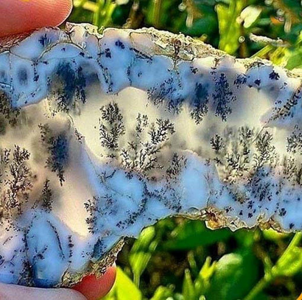 سنگ اُپالی شبیه به جنگل زمستانی