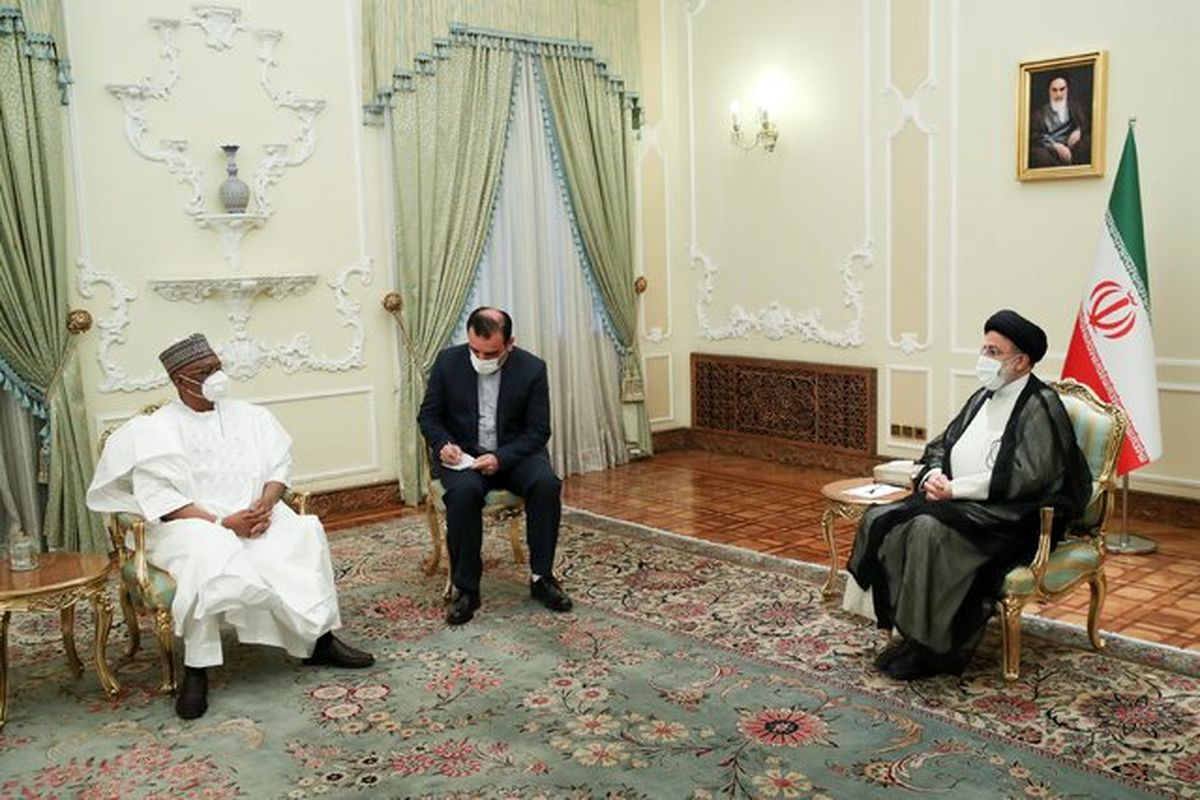 رئیسی: ایران و نیجریه ظرفیت های مناسبی برای گسترش روابط دارند