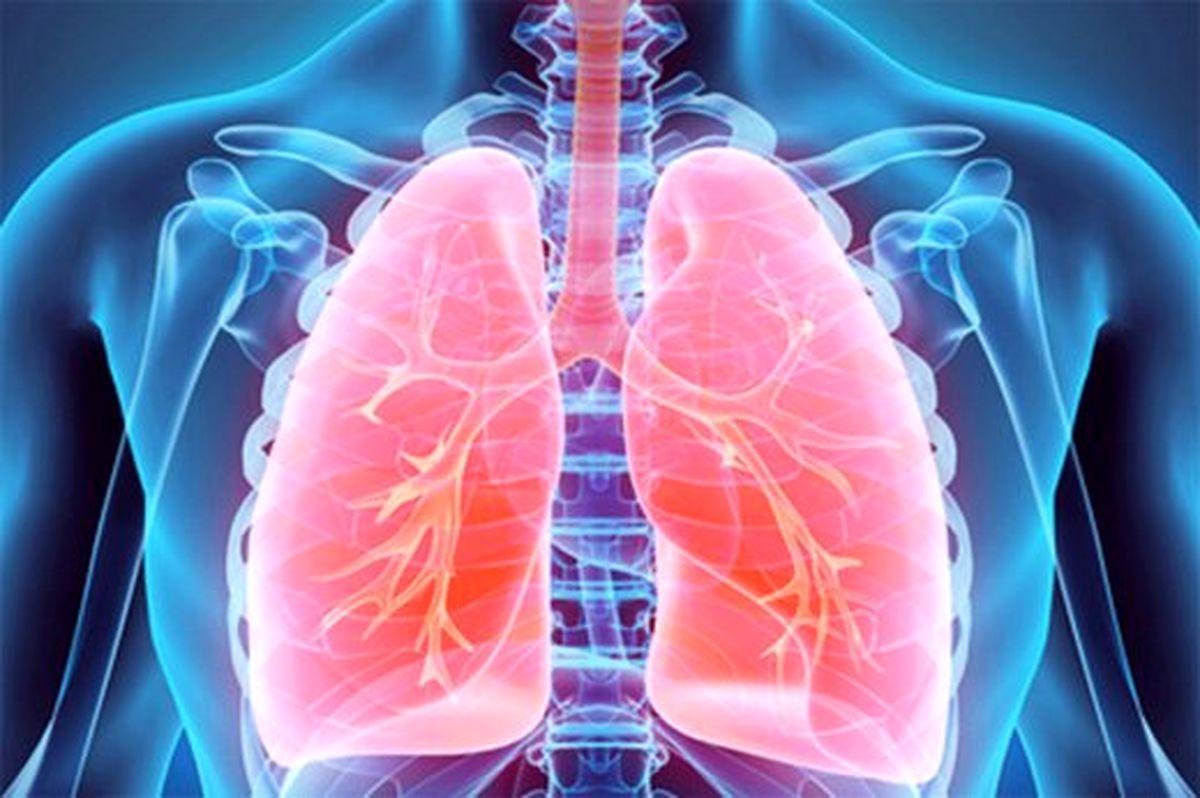 خوراکی های مفید برای تقویت ریهها