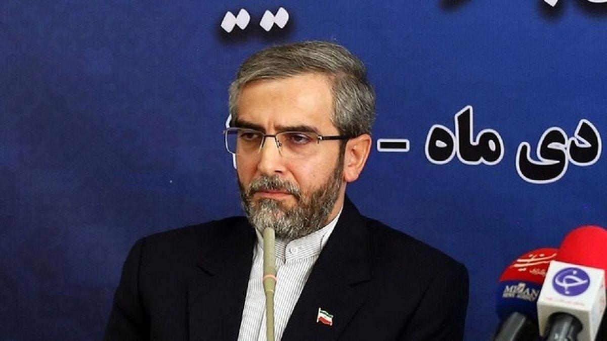 ناگفته های مهم دبیر ستاد حقوق بشر درباره زندانیان خارجی در ایران + جزئیات