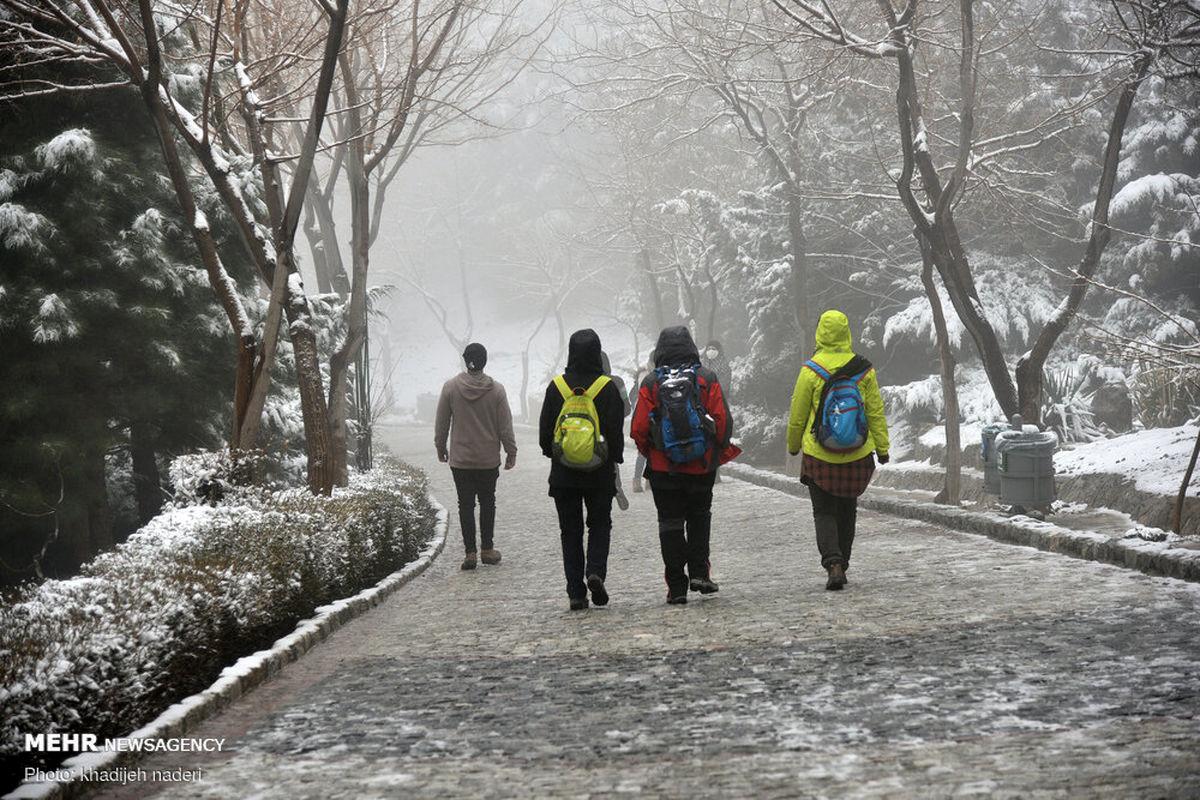 تصاویر حال خوب کن؛ بارش برف در اصفهان